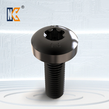 Pan head torx screw